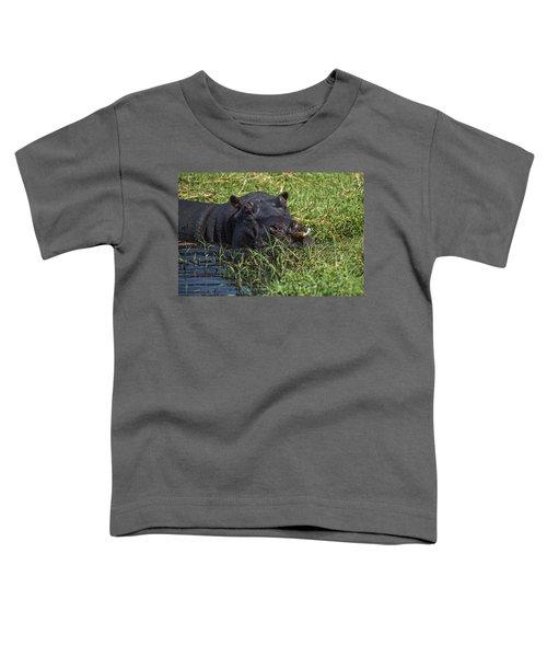 The Hippo And The Jacana Bird Toddler T-Shirt