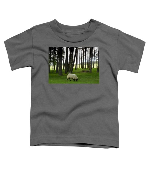 Grazing In The Woods Toddler T-Shirt