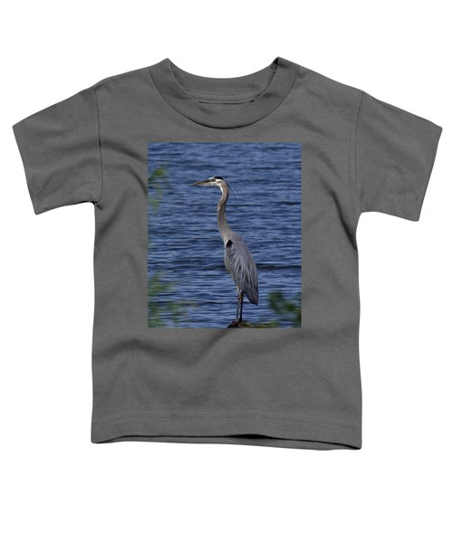 Great Blue Heron Dmsb0001 Toddler T-Shirt