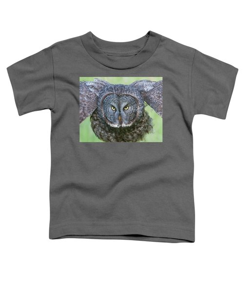 Great Gray Owl Flight Portrait Toddler T-Shirt