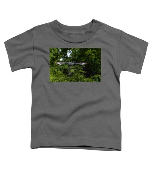 Great Grey Owl In Flight Toddler T-Shirt