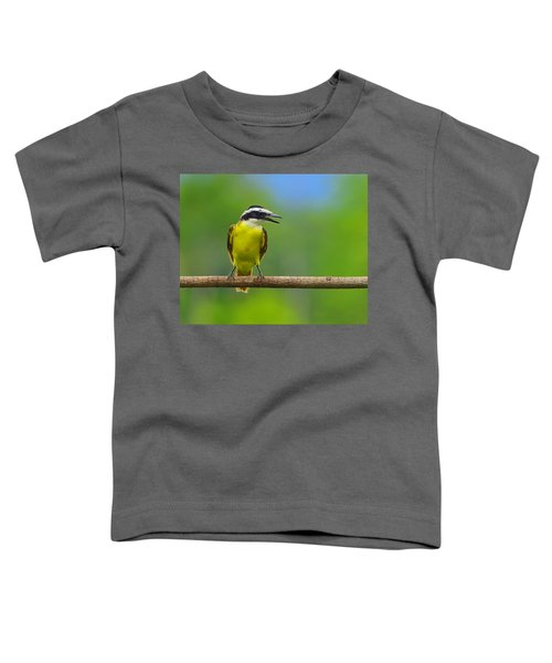 Great Kiskadee Toddler T-Shirt by Tony Beck