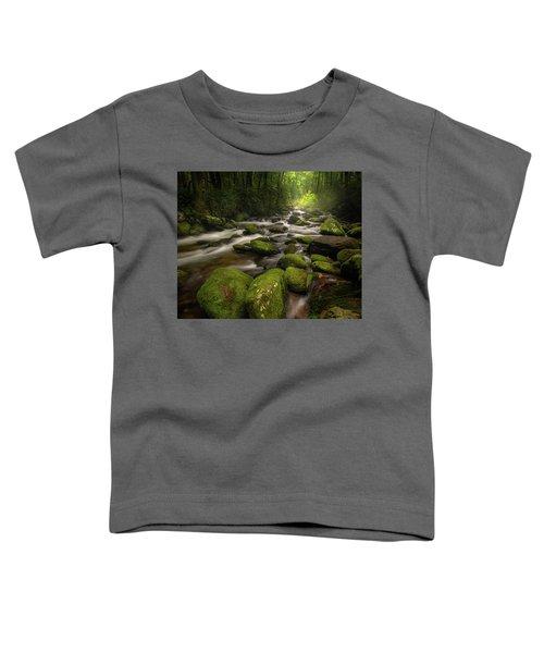 Great Smoky Mountains Roaring Fork Toddler T-Shirt