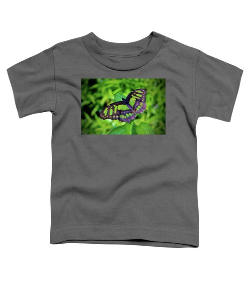 Green And Black Butterfly Toddler T-Shirt