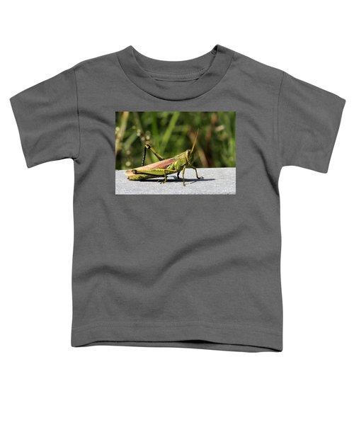Green Grasshopper Toddler T-Shirt