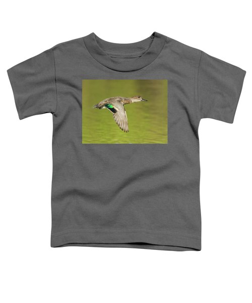 Green-winged Teal 6320-100217-2cr Toddler T-Shirt