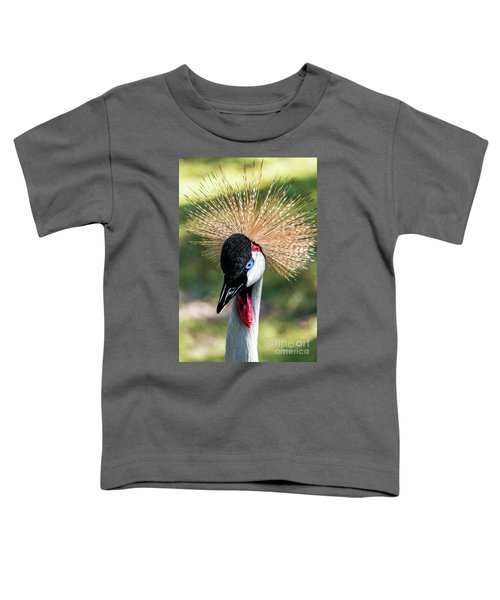Grey Crowned Crane Gulf Shores Al 2041 Toddler T-Shirt
