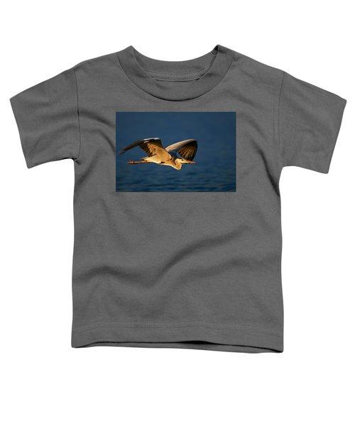 Grey Heron In Flight Toddler T-Shirt