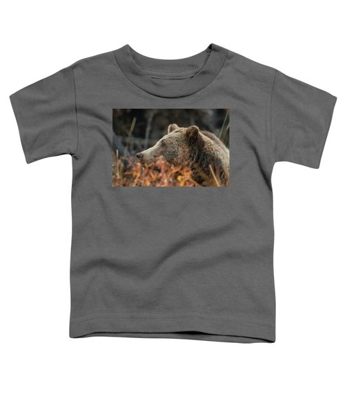 Grizzly Bear Portrait In Fall Toddler T-Shirt