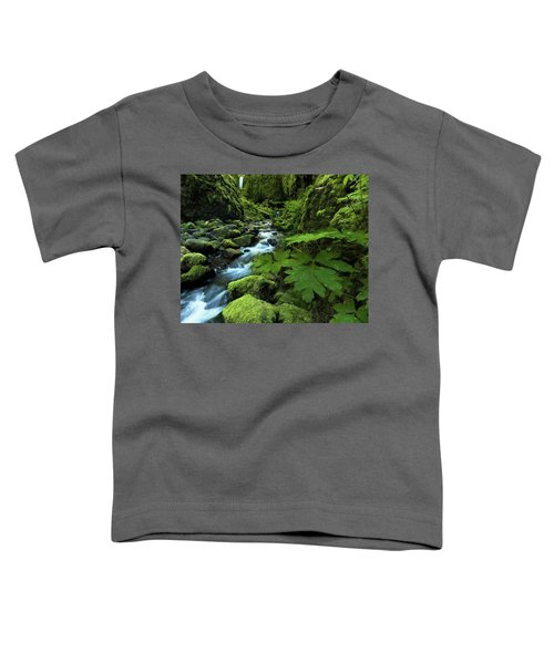 Grotto Falls Toddler T-Shirt