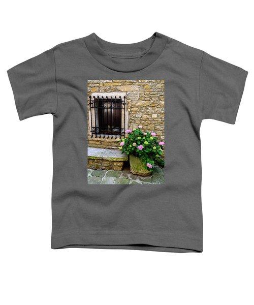 Groznjan Istrian Hill Town Stonework And Flowerpot - Istria, Croatia Toddler T-Shirt