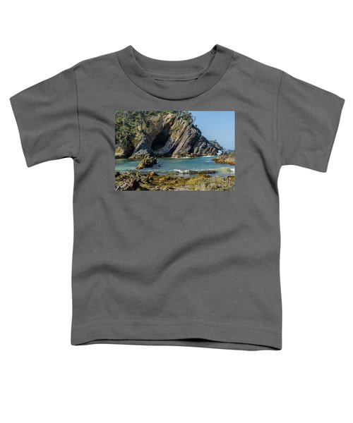 Guerilla Bay 4 Toddler T-Shirt
