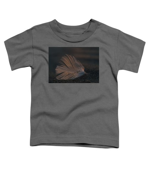 Gull Feather On A Beach Toddler T-Shirt