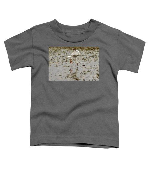Gull Fishing 01 Toddler T-Shirt