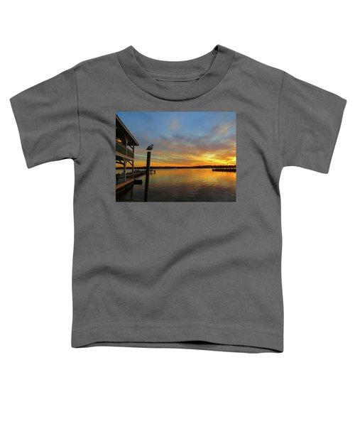 Gull Sunset Toddler T-Shirt