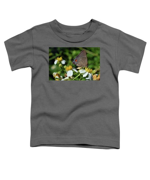 Hairstreak Butterfly Toddler T-Shirt