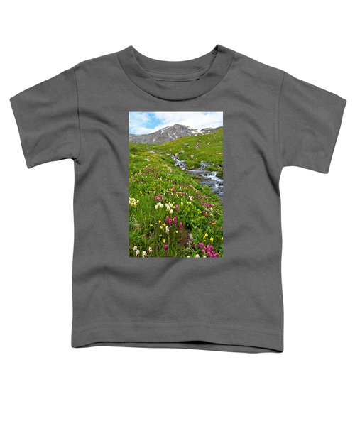 Handie's Peak And Alpine Meadow Toddler T-Shirt