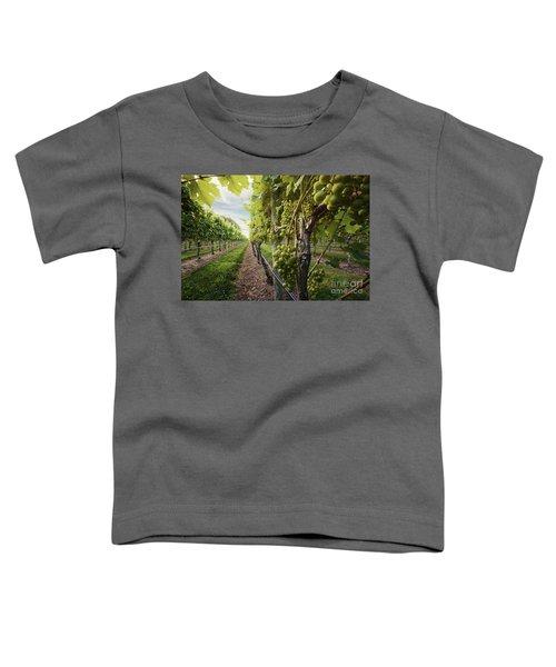 Harmony Vineyard Stony Brook New York Toddler T-Shirt