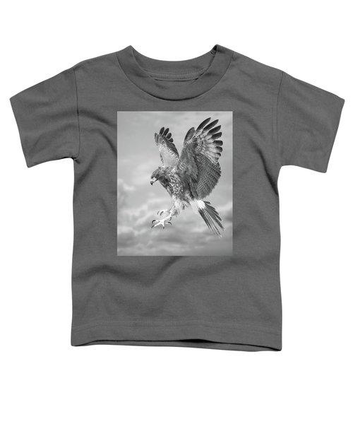 Harris's Hawk Toddler T-Shirt