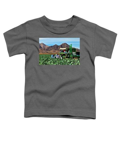 Harvesting Broccoli Toddler T-Shirt by Robert Bales