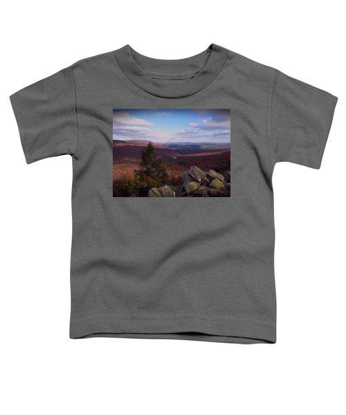 Hawk Mountain Sanctuary Toddler T-Shirt