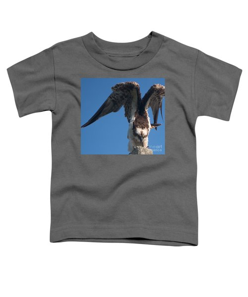 Hawk Prepares For Flight Toddler T-Shirt