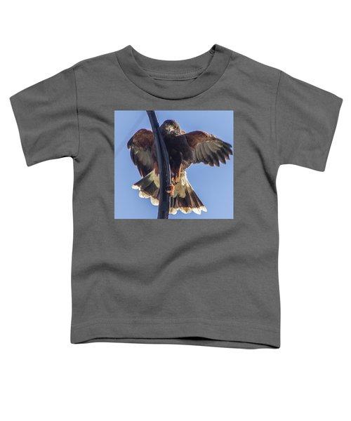 Hawk Watch 6 Toddler T-Shirt