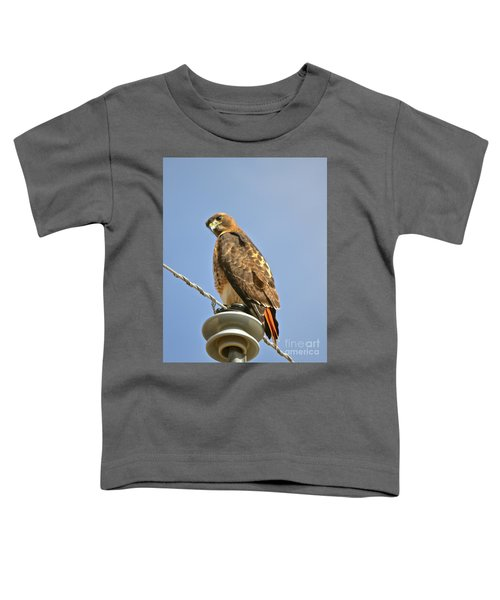 Hawkeye Toddler T-Shirt