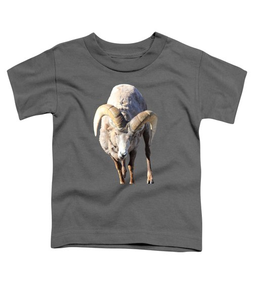 Head-on Toddler T-Shirt by Shane Bechler