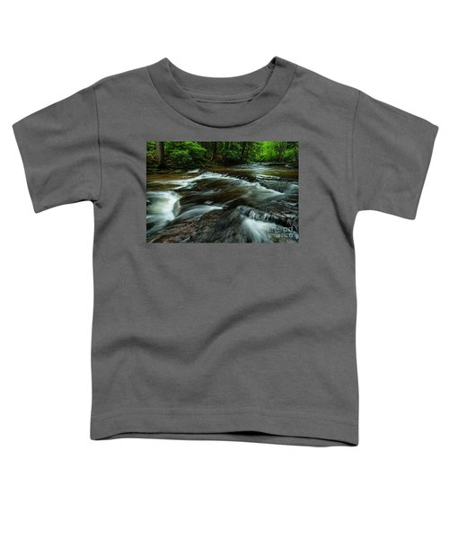 Headwaters Of Williams River  Toddler T-Shirt