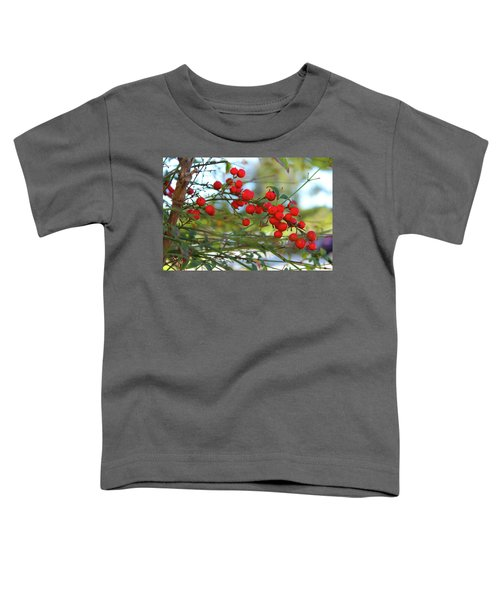 Toddler T-Shirt featuring the photograph Heavenly Bamboo by Alison Frank