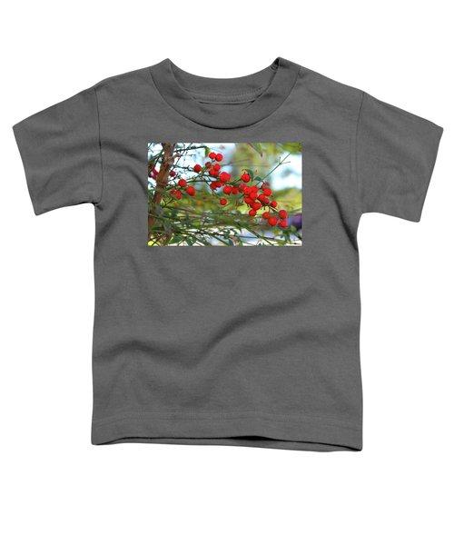 Heavenly Bamboo Toddler T-Shirt