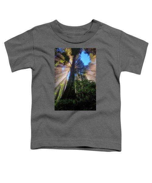 Heavenly Light Rays Toddler T-Shirt
