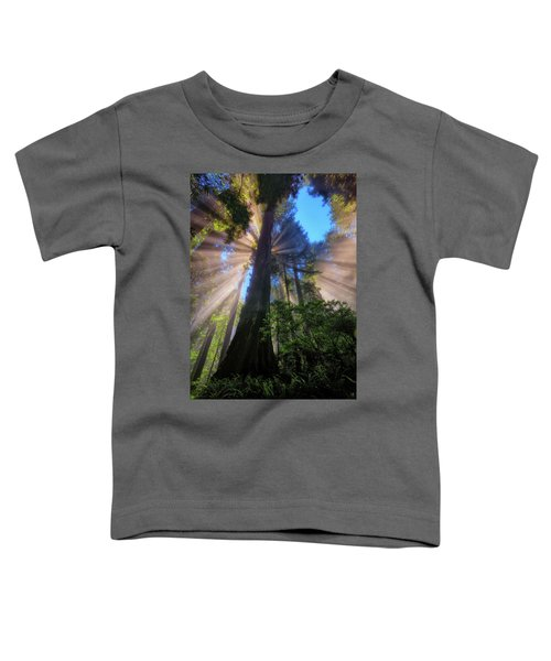 Toddler T-Shirt featuring the photograph Heavenly Light Rays by Greg Norrell