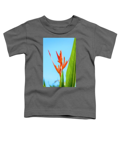 Heliconia Flower Toddler T-Shirt