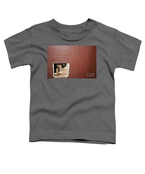 Curly Peeking Toddler T-Shirt