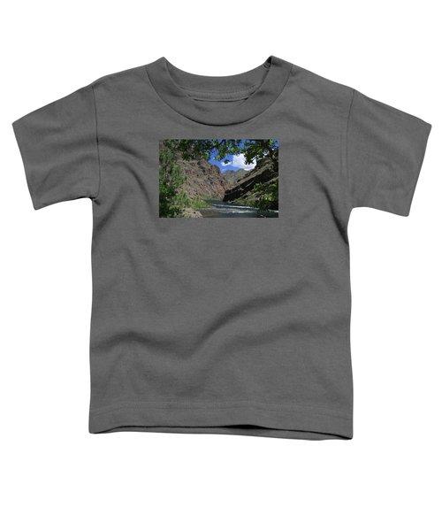 Hells Canyon Snake River Toddler T-Shirt