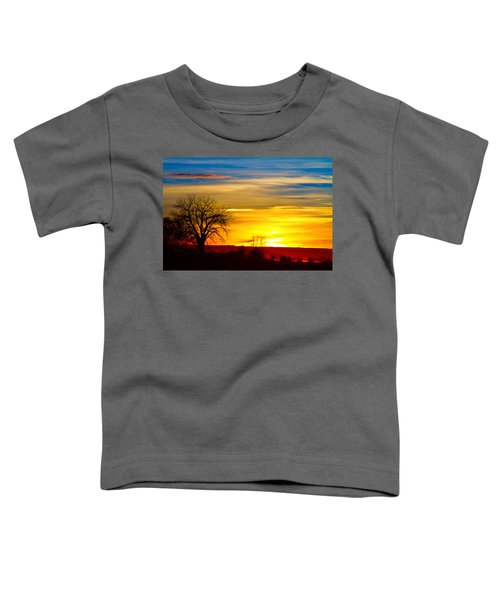 Here Comes The Sun Toddler T-Shirt by James BO  Insogna