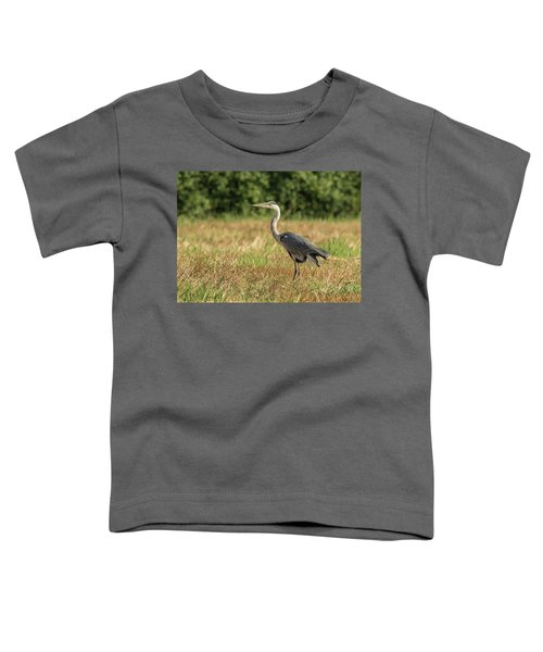 Heron In The Field Toddler T-Shirt