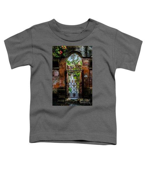 Bali Gate Toddler T-Shirt