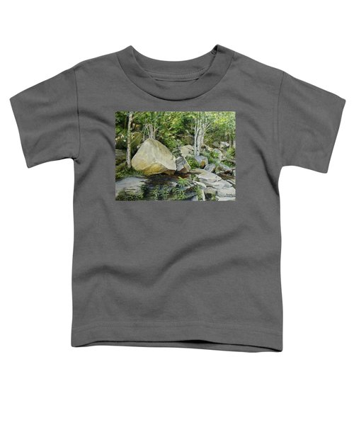 Hide And Seek Toddler T-Shirt