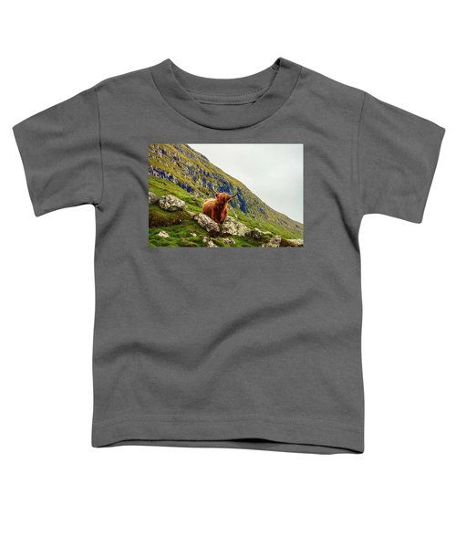Highland Cow 2 Toddler T-Shirt