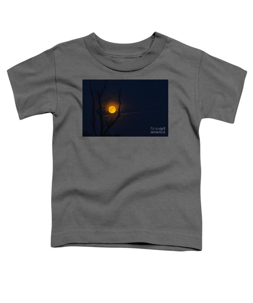 Highland Moon  Toddler T-Shirt