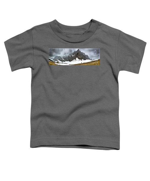 Hiking In The Alps Toddler T-Shirt