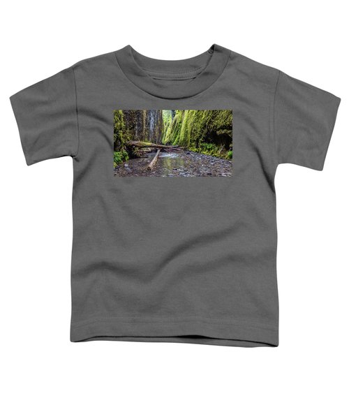 Hiking Oneonta Gorge Toddler T-Shirt