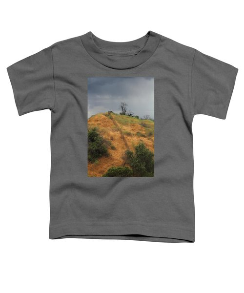 Hill Divided By Fence Toddler T-Shirt