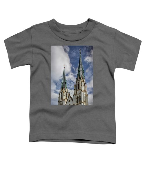 Historic Architecture Toddler T-Shirt