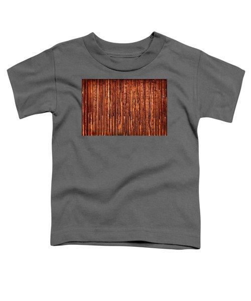 Historic Barnside Grand Tetons Toddler T-Shirt