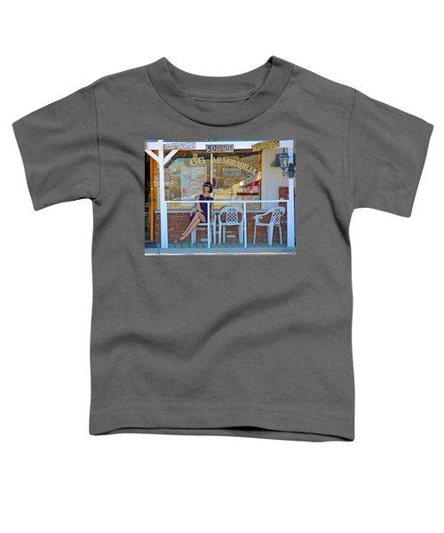 Historic Route 66 Memorabilia Toddler T-Shirt
