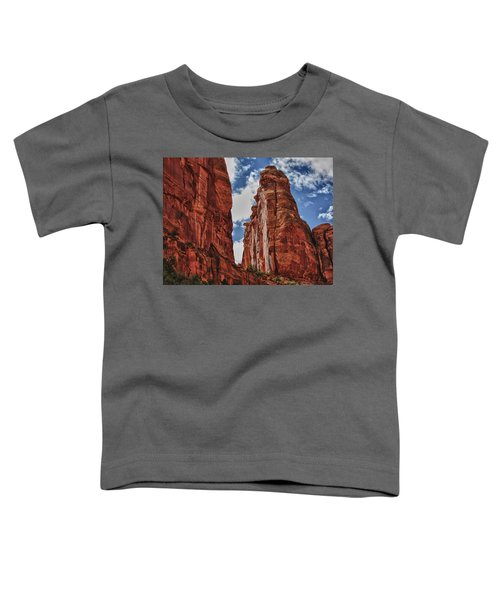 Hole In The Wall Toddler T-Shirt
